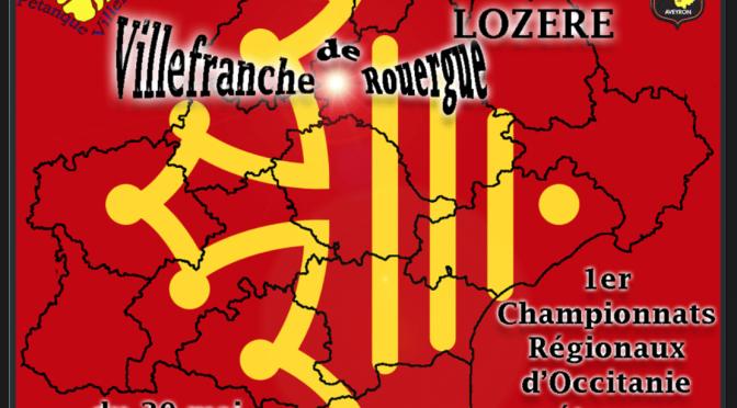 Sondage : ce que vous pensez de la non qualification des Champions d'Aveyron à la Ligue